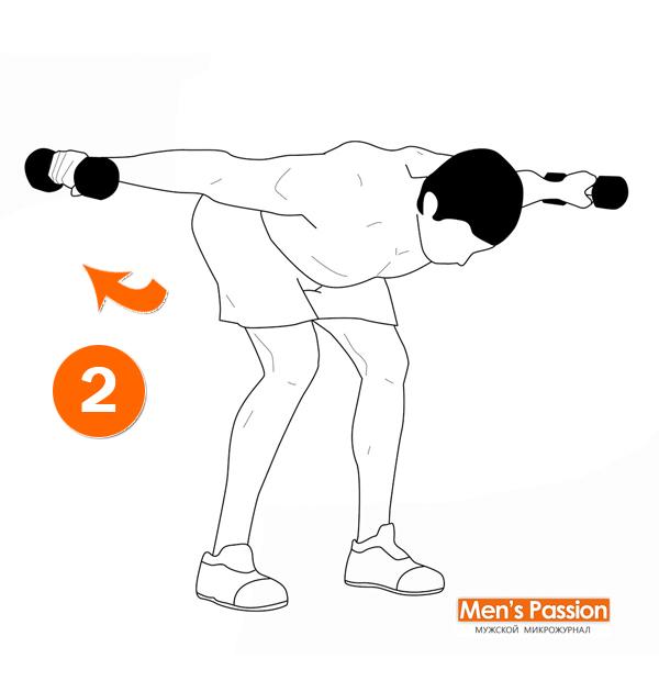 Техника выполнения разведения рук с гантелями в наклоне стоя