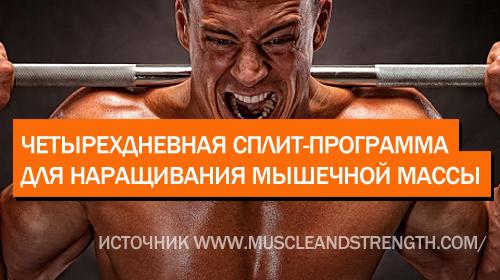 Четырехдневная сплит-система для наращивания мышечной массы