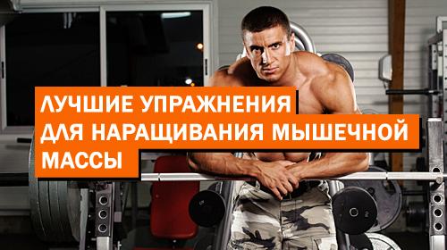 Лучшие упражнения для наращивания мышечной массы