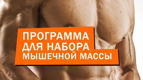Рабочая программа тренировок для набора мышечной массы