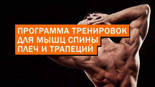 Программа тренировок для мышц спины, плеч и трапеций