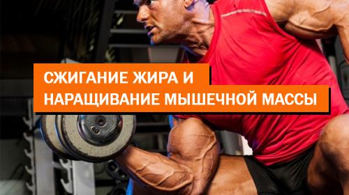 Сжигание жира и наращивание мышечной массы