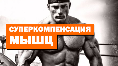 Суперкомпенсация мышц